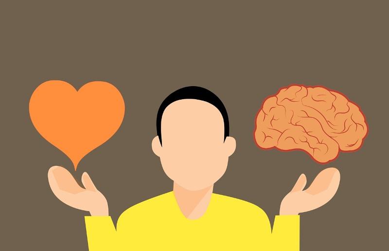 Was gut für das Herz ist, ist auch gut für das Hirn