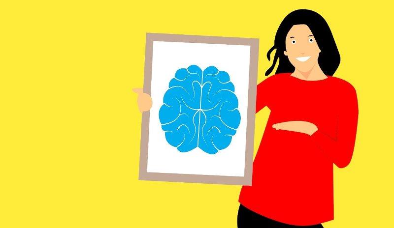 Beeinflusst ungesunde Ernährung unser Gehirn?