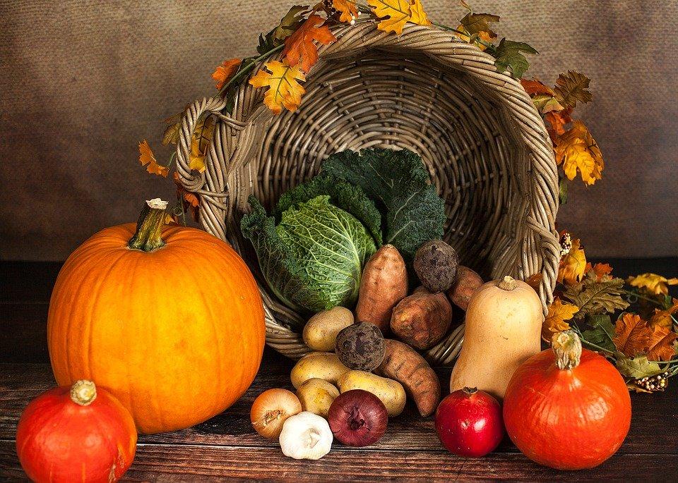 Eine pflanzenbetonte Ernährung und viel Bewegung sind die beste Krebsprävention